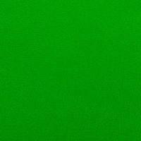 Фетр жесткий, светло-зеленый, 21*30см