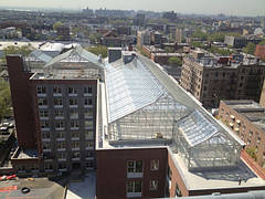 Теплицы на крыше