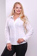 Приталена блуза з бенгаліну до довгого рукава, фото 1