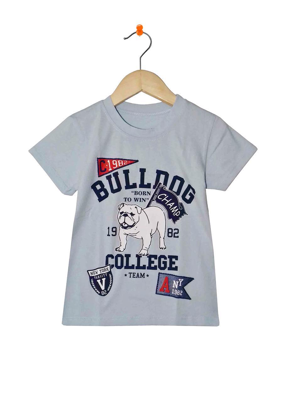 Детская футболка для мальчика серо-голубая