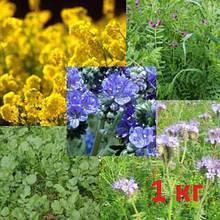 Насіння сидератів, медоносів і кормових трав фасовка 1 кг