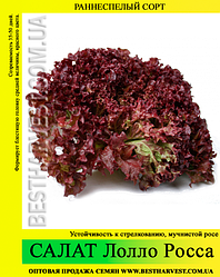 Семена салата «Лолло Росса» 100 г