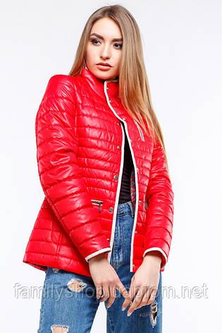 Женская демисезонная куртка большого размера   Селена Nui Very (Нью вери), фото 2