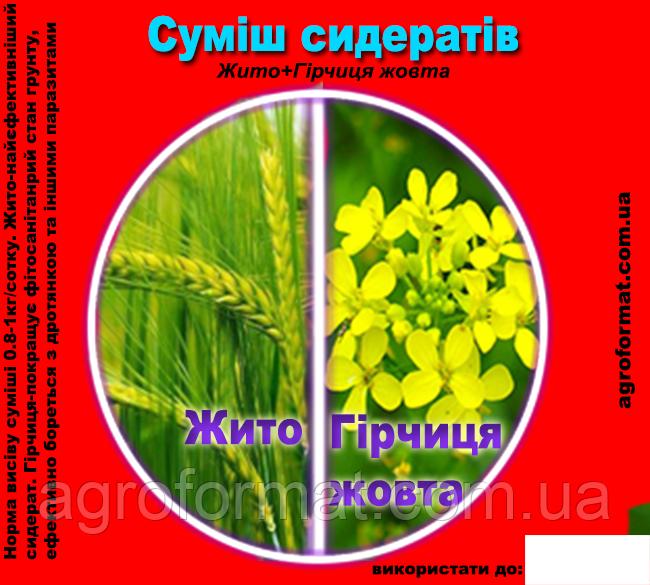 Жито(рожь)+Горчица Жёлтая (смесь сидератов)