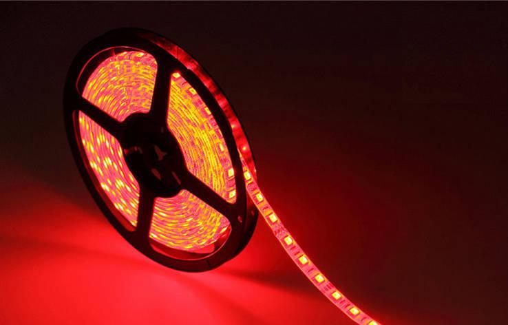 5м лента светодиодная, 300x 5050 SMD LED, красная, фото 2
