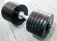 Гантелі професійні нерозбірні Vasil 45 кг, фото 1