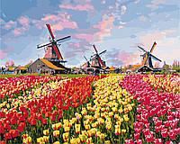 Картина по номерам Краски Голландии (KH2224) 40 х 50 см Идейка