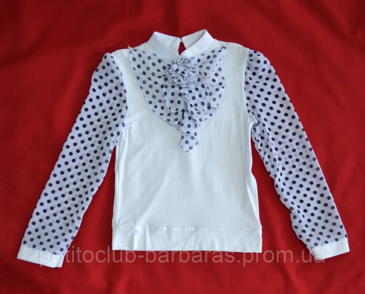 Детская трикотажная блуза белая с темно-синими горошками р. 128-152 cм (Catherine, Польша)