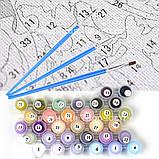 Картины по номерам Воздушные шары 2, 40х50 (КНО2221), фото 4