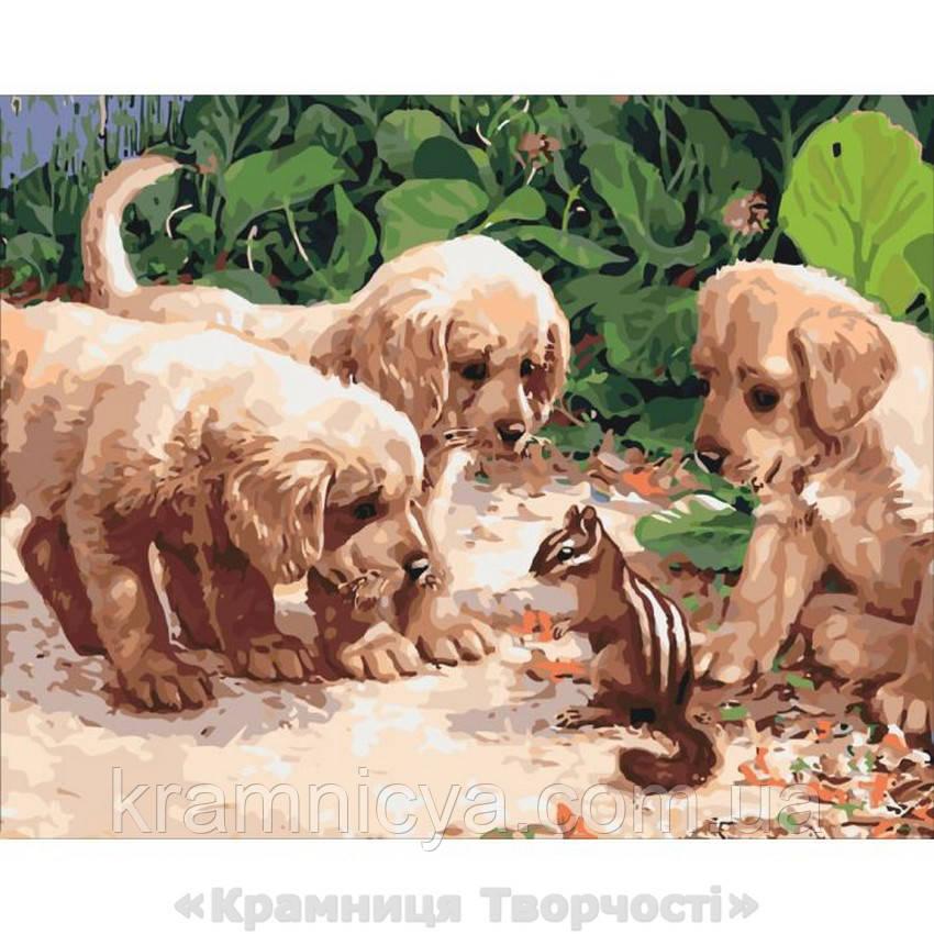 Картины по номерам Щенки и бурундучок 2, 40х50 (КНО4055)