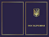 """Памятный нагрудный знак """"Захисник України"""" РНБОУ, фото 3"""