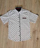 Белая рубашка с коротким рукавом для мальчика, фото 1
