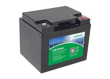 Литий железо фосфатный аккумулятор EverExceed LDP 12-30 (12В 30Ач)