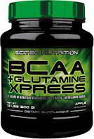 BCAA + Glutamine Xpress 600 g (bcaa), фото 1