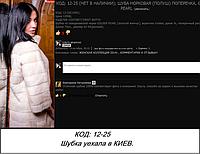 ССЫЛКА НА ОТЗЫВ (12-25): https://olga-fran-fur.mirtesen.ru/photos/20906159895