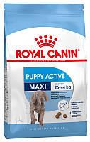Корм для молодых активных собак крупных пород Royal Canin Maxi Puppy Active