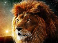 Львиный сезон - подарки для мужчин, рожденных под знаком льва.