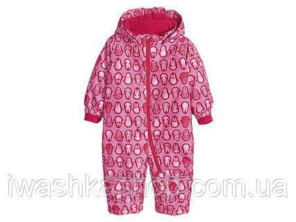 Розовый термо комбинезон для девочки 6 - 12 месяцев, размер 74 - 80, Lupilu