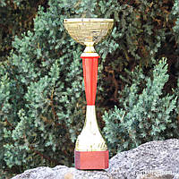Кубок ИТ1218 С