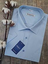 Рубашка с коротким рукавом голубого цвета в мелкий рисунок