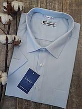 Рубашка с коротким рукавом голубого цвета в мелкую полоску