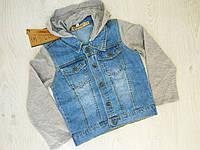 Джинсовая курточка для мальчиков , Венгрия , Grace, 146-152-158-164 рр., арт. B70705 ,