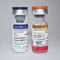 Вакцина для собак Биокан DHPPi+LR / Biocan DHPPi+LR (1 доза)