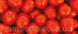 Семена томата Астерикс F1 25000 семян Syngenta