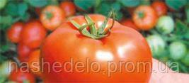 Семена томата Бобкат F1 1000 семян Syngenta