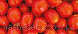 Семена томата Фортикс F1 500 семян Syngenta