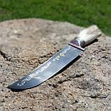 Узбекский нож пчак с рукоятью из рога, фото 2
