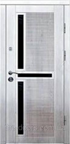 Дверь входная Статус модель М3 с молдингом