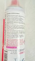 Смазка силиконовая Mottec, аэрозоль 150мл, фото 3