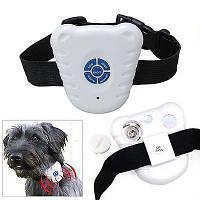 Ультразвуковой ошейник  Bark Control Dog Collar