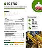 Семена кукурузы Кукурудза ЄС Тріо 80000 н.