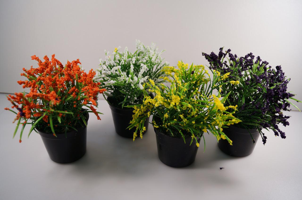 Цветы в вазончивах