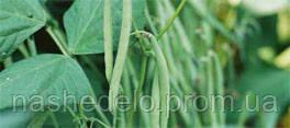 Семена фасоли спаржевой Кларон 100000 семян Syngenta