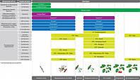 Схема захисту кісточкових садів