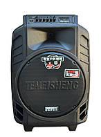 Аккумуляторная колонка с усилителем Temeisheng SL 15-08, фото 1