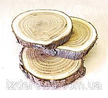 Срез (спил) шлифованный 14-16см