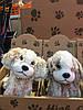 Детские мягкие игрушки, детская мягкая игрушка, плюшевый щенок, плюшевые щенята, плюшевые щенки
