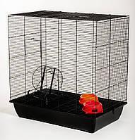 Клетка InterZoo для белок Squirrel 80 Color G138 (780*480*800 мм)