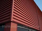 """Фасадные панели """"Оригинал"""" 0,5 мм РЕ глянец, RAL 3005 завод """"Термастил"""", фото 4"""