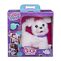 Интерактивный щенок ГоГо FurReal Friends от Hasbro / FurReal Friends Get Up & GoGo My Walkin' Pup Pet, фото 1