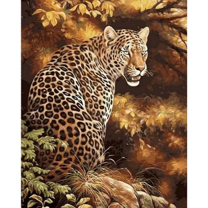 Картина по номерам Леопард, 40x50 см., Mariposa