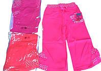 Трикотажные брюки для девочек опт, размеры 6-36 мес, арт. G-2255, фото 1