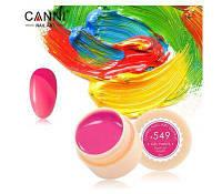 Гель краски и гель лак 2 в 1 Canni, №547