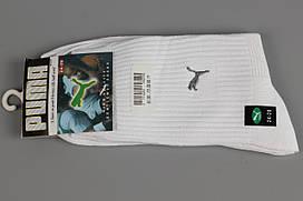 Носки спортивные унисекс многокомпонентные в стиле Puma 24-28 White