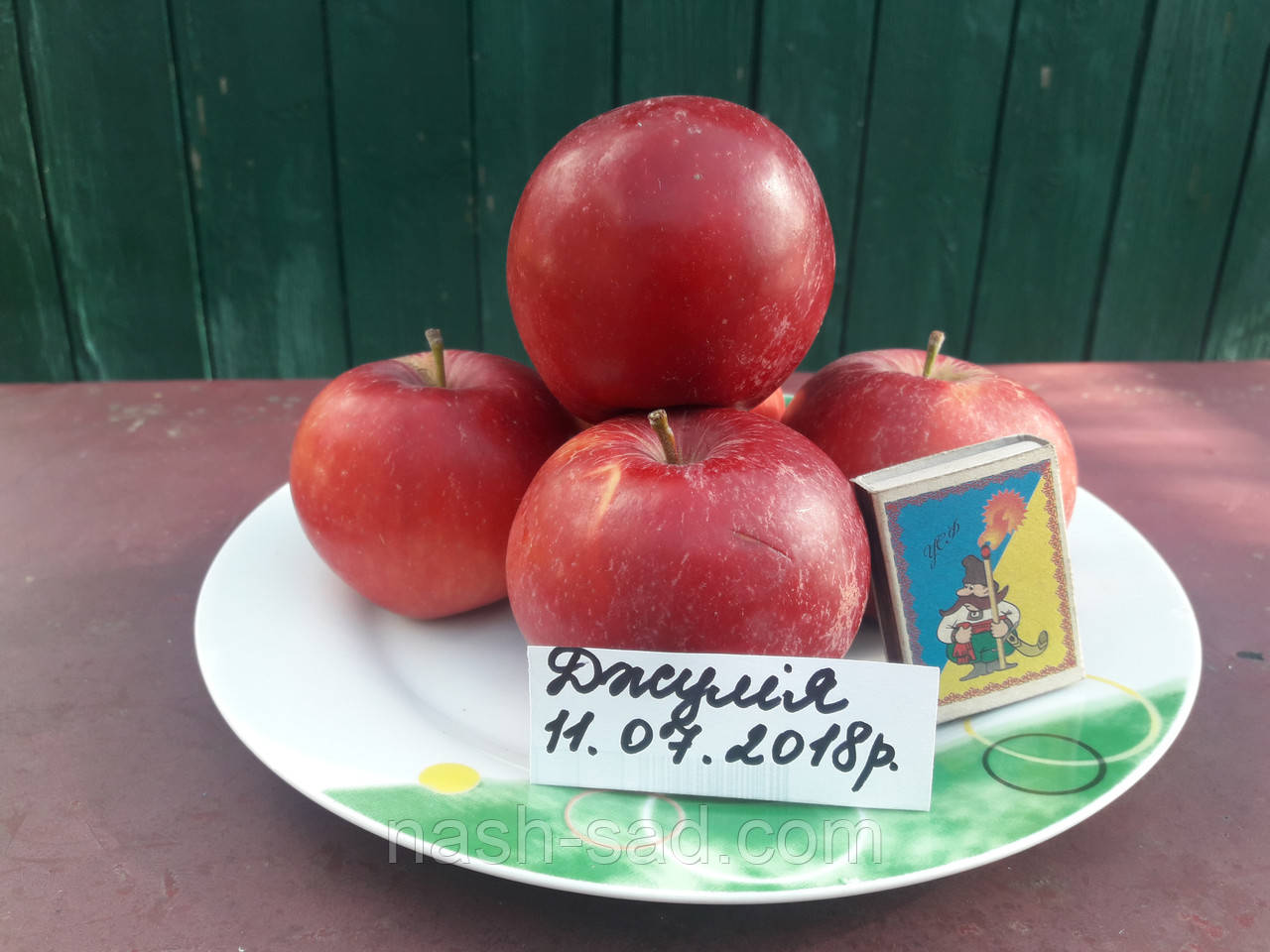 Саженцы яблони Джулия (Чехия)