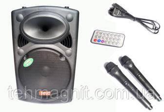 Акустика большая аккумуляторная Temeisheng 2305L колонка USB/FM/Bluetooth с радиомикрофонами ( Реплика )